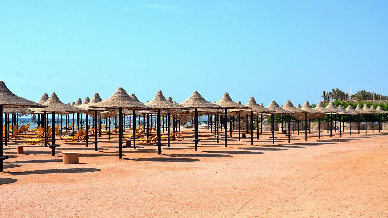 A row of beach chairs and an umbrella